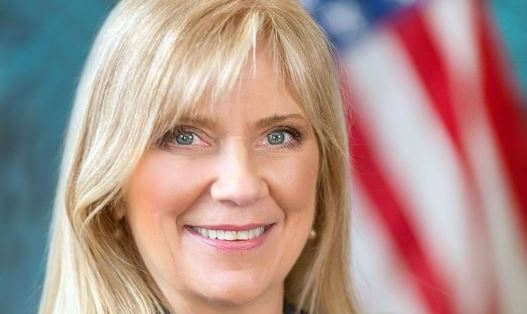 LIVE AT 3 PM: Cindy Wade discusses campaign for New York State Assembly (podcast)